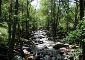 Río en las sierras de Navaluenga