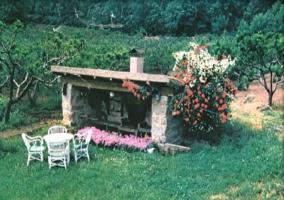 Barbacoa con muebles de exterior delante y flores