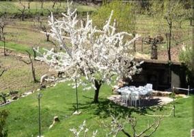 Jardín de la casa con barbacoa y muebles de exterior junto a ella
