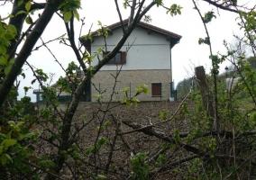 Lateral de la casa vista entre plantas del exterior