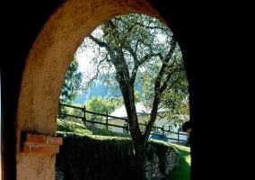 Arco decorativo y jardín