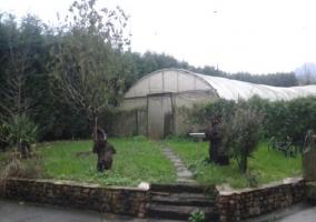 Carpa exterior del alojamiento y campos alrededor