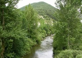 Río Ultzama