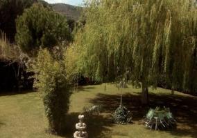 Vista del jardín repleto de plantas con una fuente y muebles de exterior