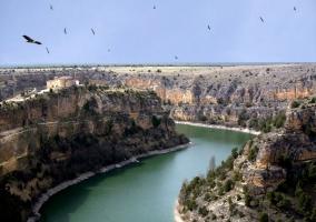 Hoces del río Duratón con buitres sobrevolando