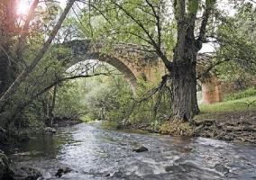 Puente medieval sobre el río Pirón