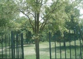 Puerta con verja abierta y campo alrededor