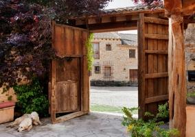 Mesa en el patio y perros