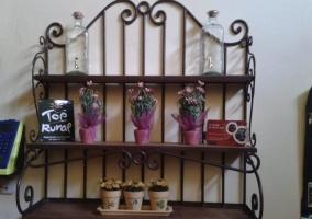 Decoración de la casa con pequeñas plantas de color