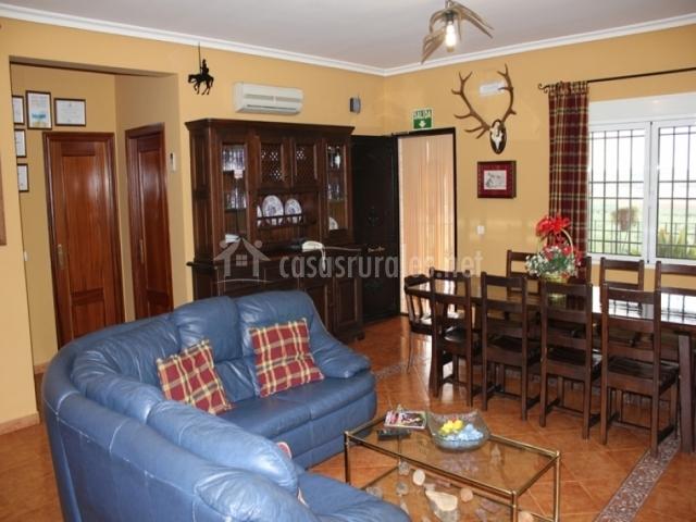 Salón ambiente rústico con sofá azul