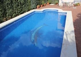 Piscina con delfín en el fondo