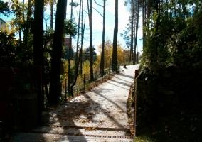 Camino de entrada de piedras