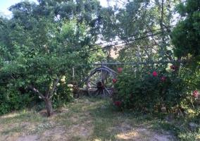 Jardin con barbacoa