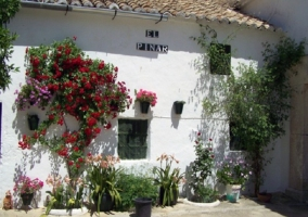 Cortijo El Pinar