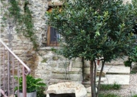 Fachada con árbol y escaleras