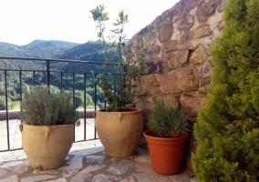 Vistas de los exteriores con plantas