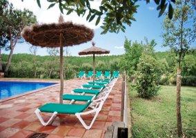Tumbonas verdes en piscina