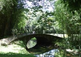 Puente en el Parque Natural del Senorio de Bertiz