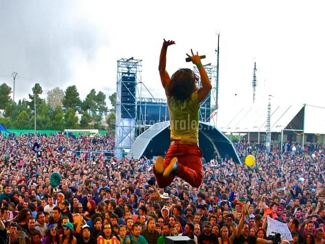 Viña rock en Villarrobledo
