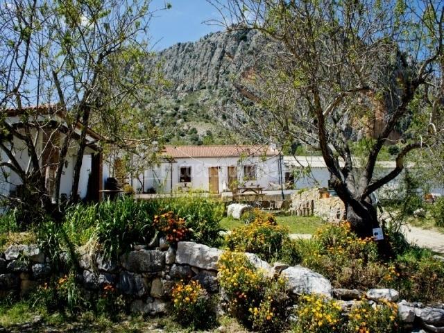 Jardines de las casas