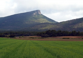 Pico Ranera