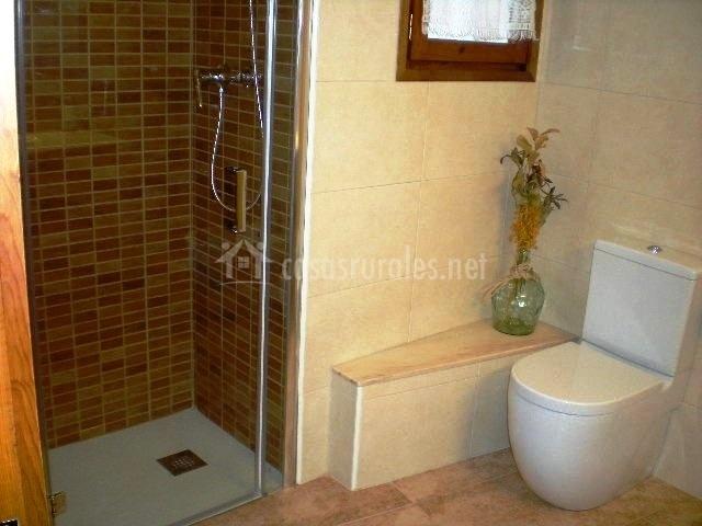 Cuarto de baño con aseo y ducha