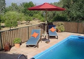 Patio con piscina y zona de solarium