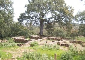 Casas Rurales Aracena