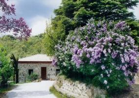 Casa Rural Peña Pintada