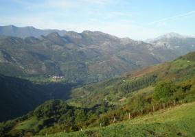 Reserva Natural de Saja Besaya
