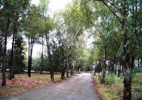 Parque La Atalaya