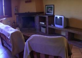 Sala de estar con chimenea decorada