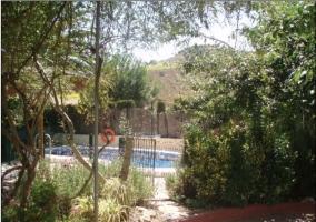 La piscina vista desde el sendero con vegetación