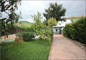 Paseo de entrada a la casa con vegetación a ambos lados del sendero
