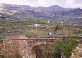 Puente del Horcajo sobre el río Campanillas