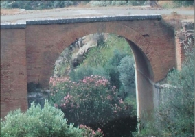 Puente del Paraíso con vegetación