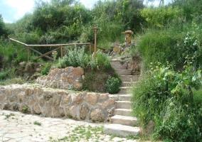 Caminos de piedras y con plantas