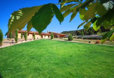 C.T.R. Del Verde al Amarillo - Peñasrrubias De Piron, Segovia