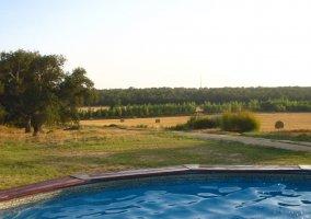 Las hectáreas de la Casa Rural