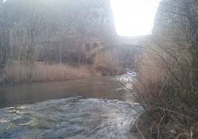 Rio Túria