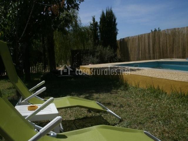 Tumbonas en la piscina