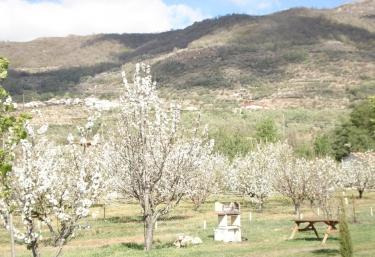 El Rincón del Jerte - Rebollar, Cáceres
