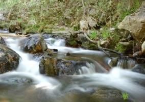 Parque nacional de Cabañeros otro rincón