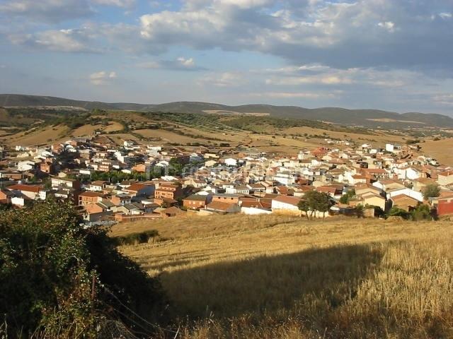 El olivar del puerto casas rurales en horcajo de los montes ciudad real - Casa rural horcajo de los montes ...