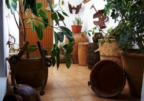 Macetas en el patio interior de la casa rural