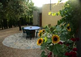 Mobiliario de exterior y vegetación de la casa rural