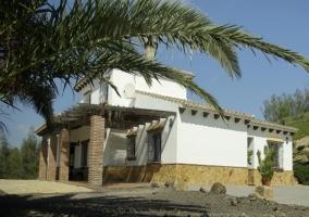Fachada exterior y palmeras