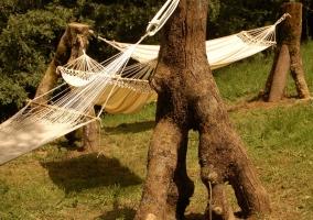 Hamacas en el jardín colgadas de troncos