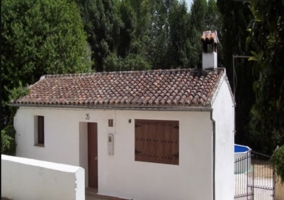 Los Chopos del Real Tesoro - Cortes De La Frontera, Málaga