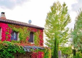 La Casa - El Corazón Verde - Badilla, Zamora